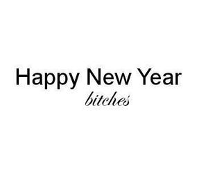bitch, 2013, and new year image