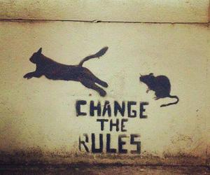 rules, cat, and change image