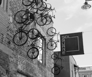 bicycle, black and white, and photo image