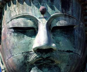 abroad, Buddha, and large image