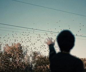 bird, boy, and sky image