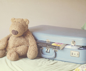 teddy and travel image