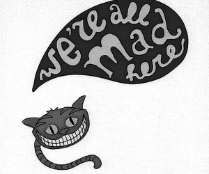 alice, mad, and quote image