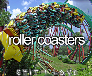 Roller Coaster, love, and fun image