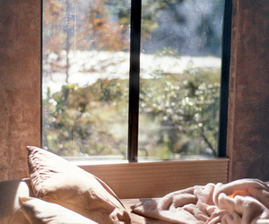 bed, window, and morning image