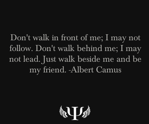 albert camus, quote, and text image