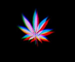 weed, marijuana, and drugs image