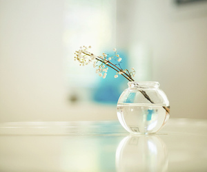 flowers, white, and water image