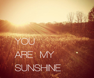 sunshine, love, and quote image