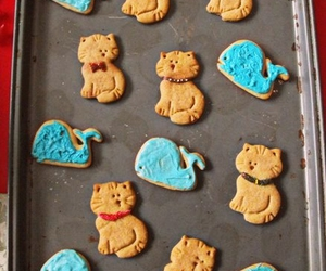 cats, Cookies, and whales image
