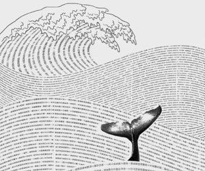 art, whale, and book image