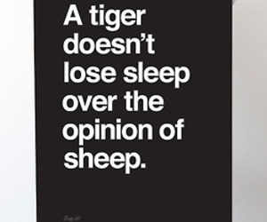 opinion, qoute, and sheep image