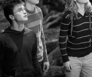 black and white, harry potter, and ron weasley image