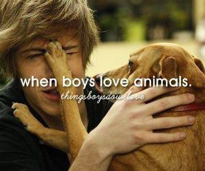 boy, love, and animal image