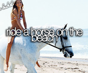 horse, beach, and bucket list image