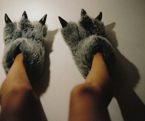 slippers, shoes, and legs image