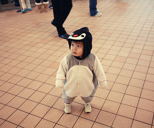 cute, baby, and penguin image