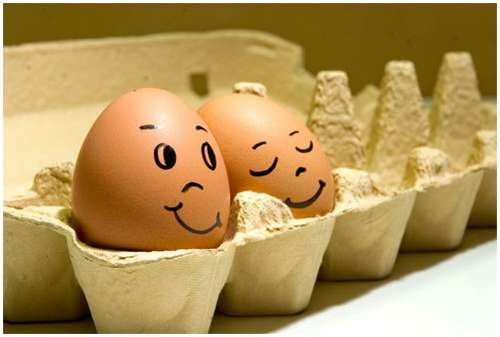 eggs and cute image