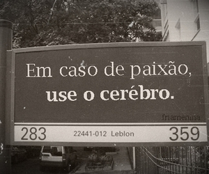 text, paixão, and cerebro image