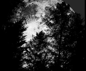 big, full moon, and black and white image