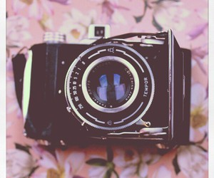 camera, flowers, and lovely image
