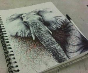 drawing, elephant, and art image