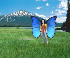 butterfly, demi, and lovato image