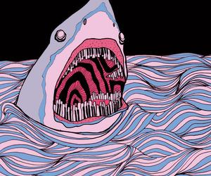 shark, art, and piano image