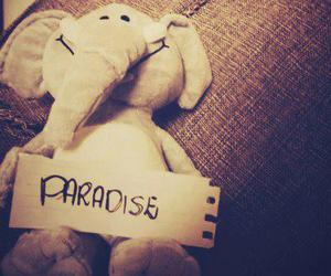 paradise, elephant, and coldplay image