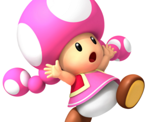 toadette and super mario characters image