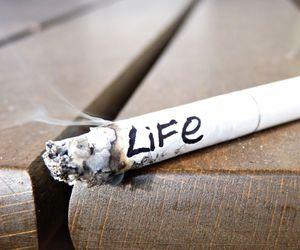 life, smoke, and cigarette image