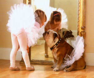dog, ballet, and ballerina image