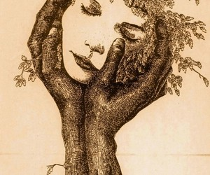 arbre, girl, and reve image