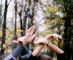 hands, photography, and nature image