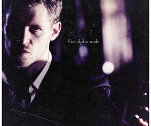 klaus, klaus mikaelson, and the vampire diaries image