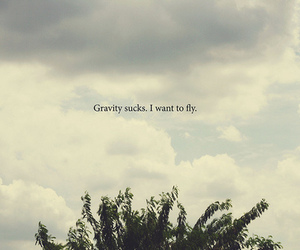 fly, gravity, and sky image