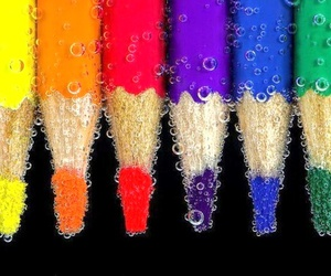 color, colorful, and macro image