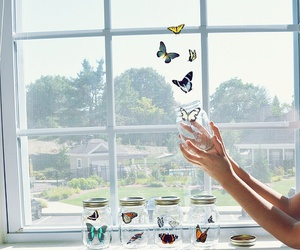 butterflies and freedom image