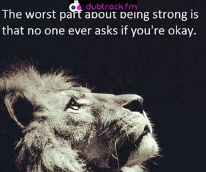 strong, lion, and quote image