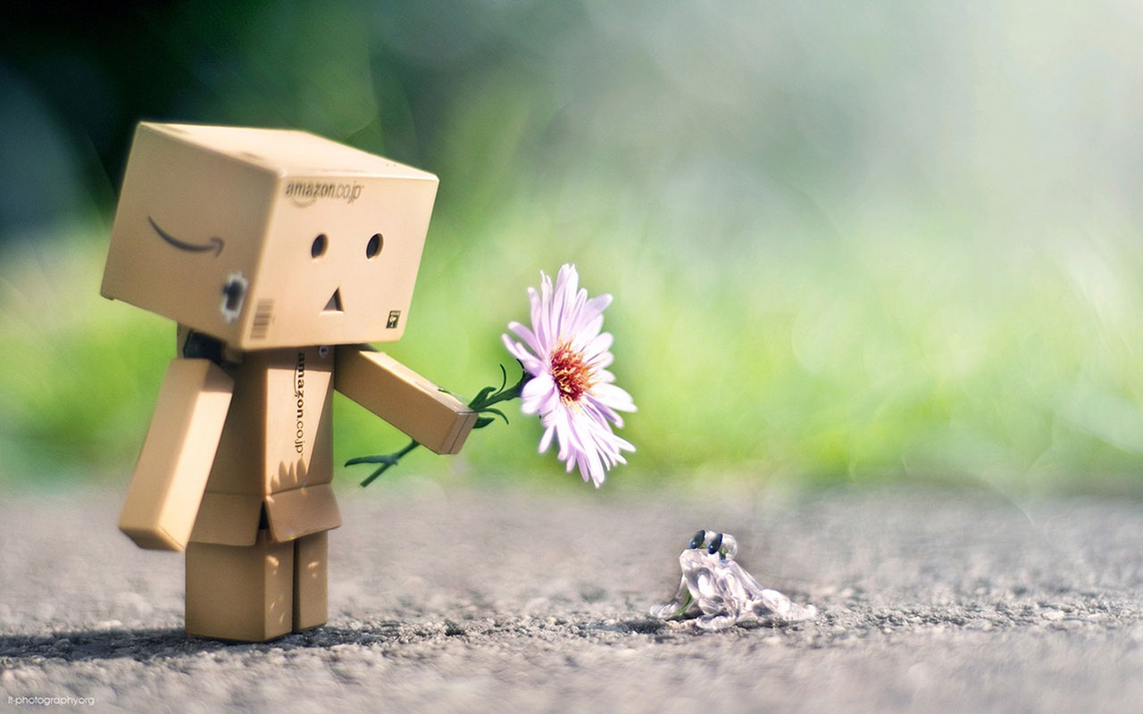 Lovely Box Danbo Wallpaper 7 Other Wallpapers Free