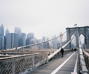 bridge, city, and new york image