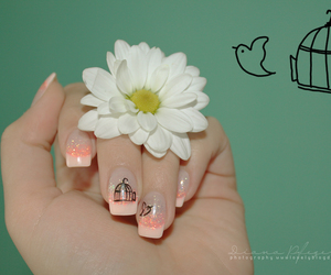 bird, daisy, and nailart image