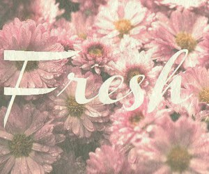 flowers, fresh, and spring image