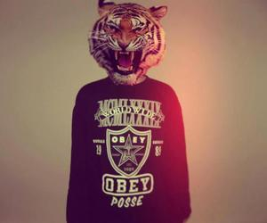 tiger, obey, and swag image