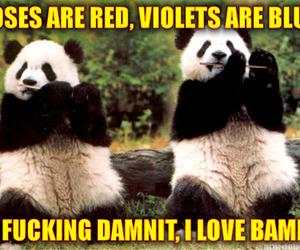 bamboo, panda, and poem image