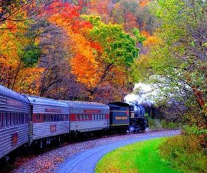 train, tree, and nature image