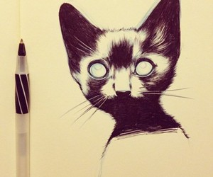 cat, draw, and drawing image