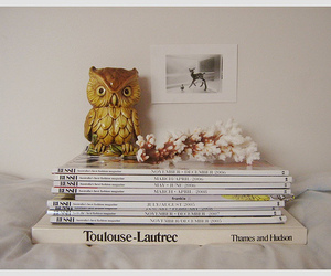 owl, magazine, and book image