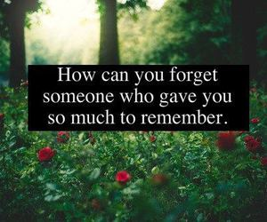 forget, text, and remember image