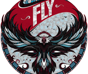 fly, eagle, and art image